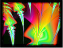 'Psychedelic Spears;